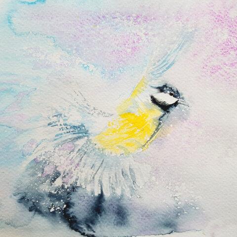 Art_akvarell-svenska-fåglar-1